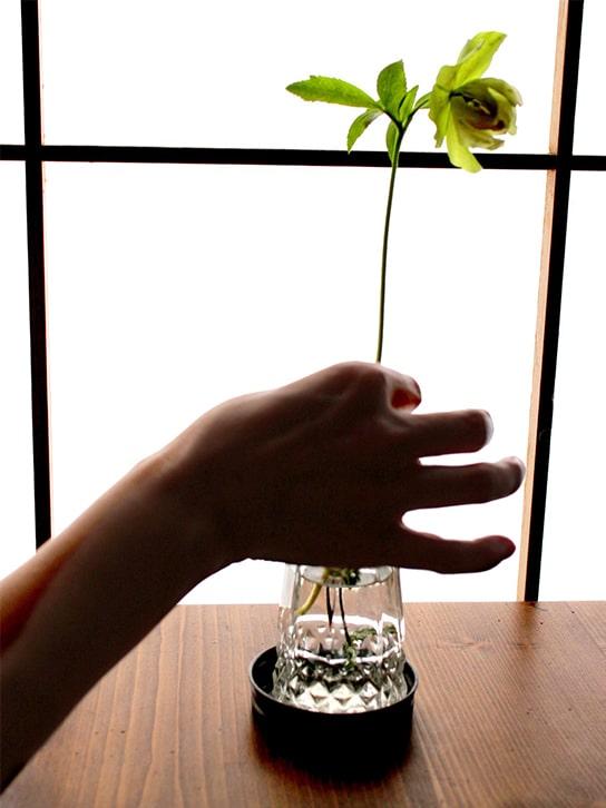 「柚子と金柑」の想い